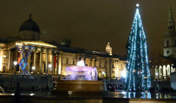 London's Christmas lights in Trafalgar Square